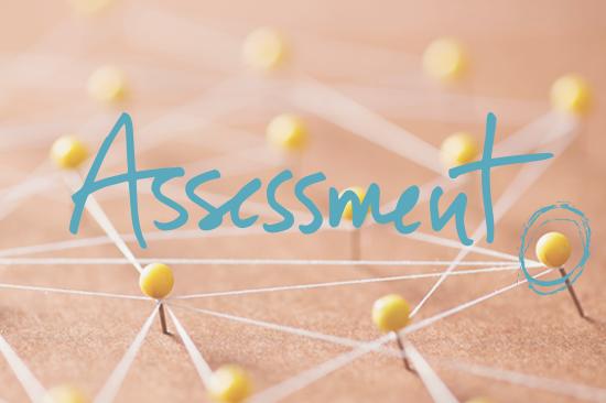 Start the Assessment